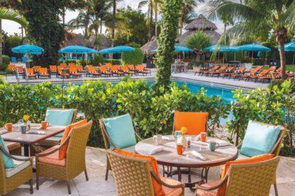 The Palms Hotel & Spa - TUI Dernières Minutes